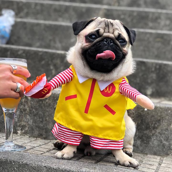 Funny Fast Food McDo KFC Parody Foodie Costume for Dog