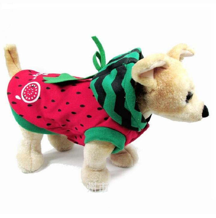 Cute Watermelon Orange Fruit Costume for Dog