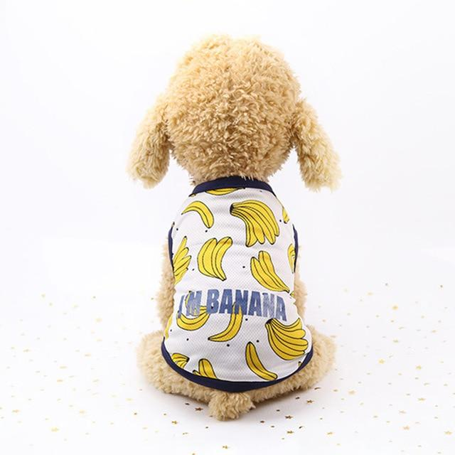 Banana Pattern Blue Lining Spring Small Dog Tank Top