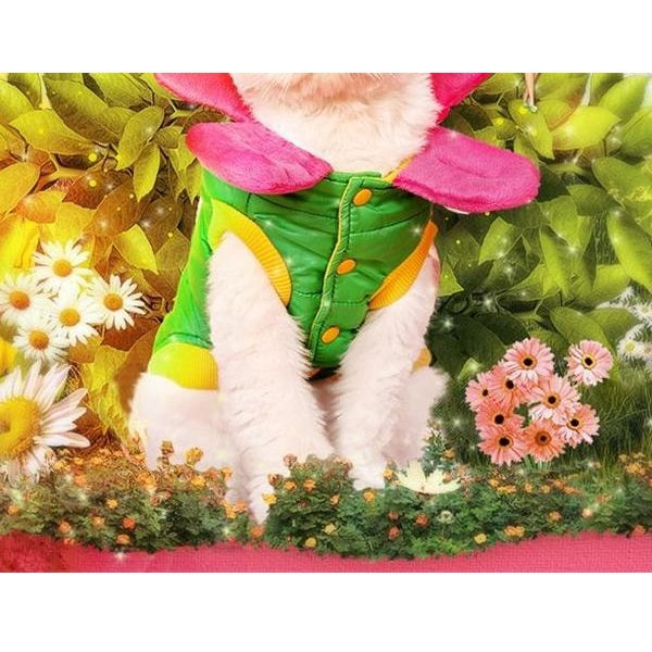 Lovely Flower Petals Costume For Dogs - Woof Apparel