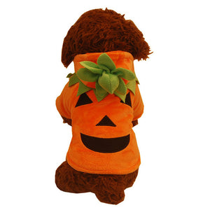 Halloween Cool Pumpkin Orange Costume For Dogs - Woof Apparel