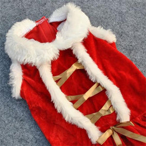 Mrs Santa Claus Cute Christmas Velvet Costume for Dog - Woof Apparel