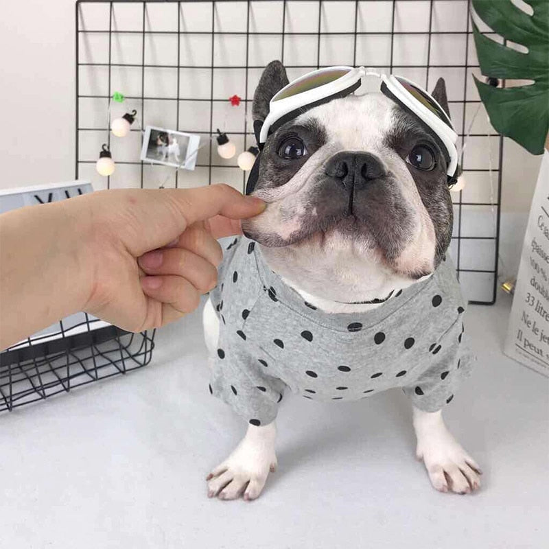Cute Black Polka Dot Pattern Summer Gray Dog Shirt - Woof Apparel