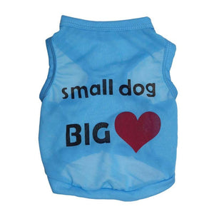 Small Dog Big Heart Slogan Print Spring Puppy Shirt - Woof Apparel
