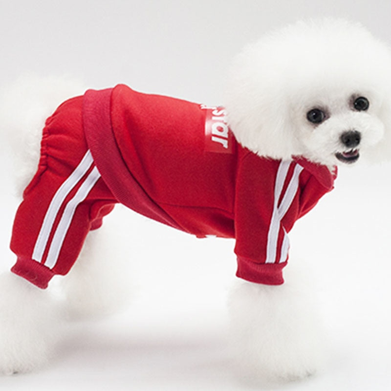 Fashionable Sporty Superstar Print Dog Overall Jumpsuit - Woof Apparel