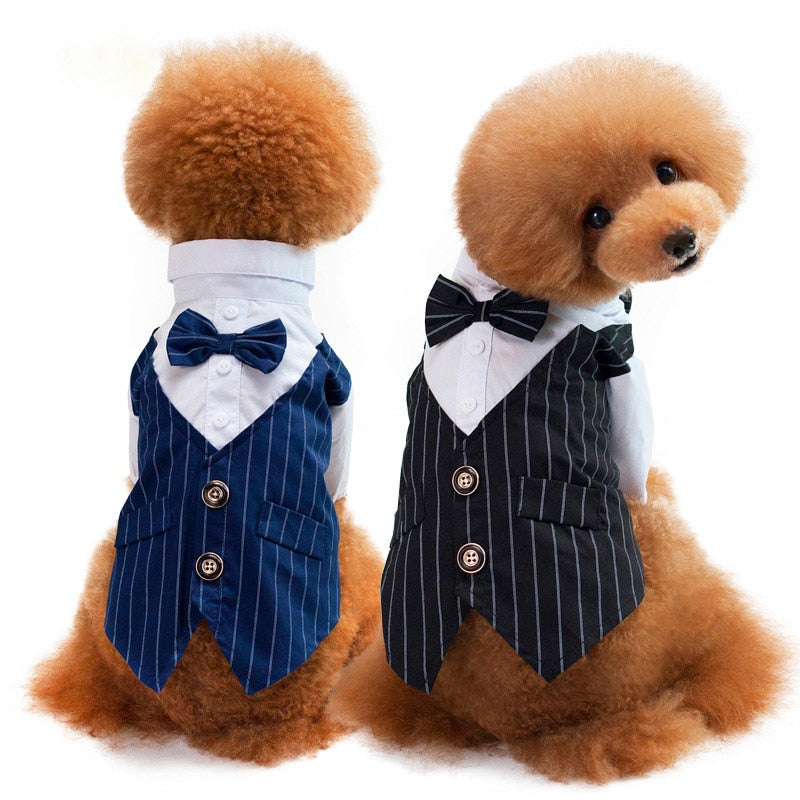 Charming Tie And Stripe Vest Wedding Outfit Dog Shirt - Woof Apparel
