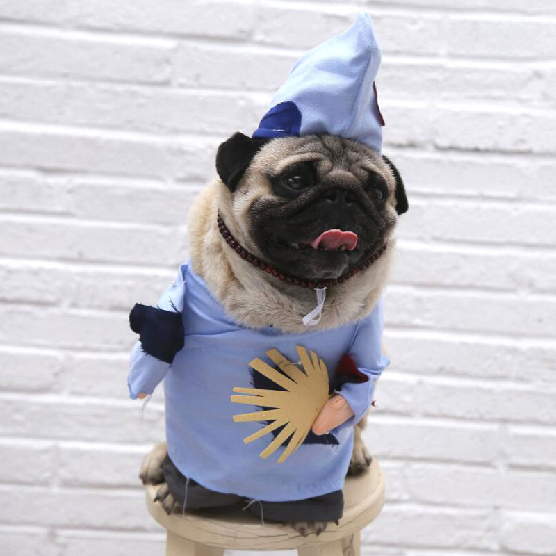 Funny Old Chinese Ancient Beggar Monk Costume For Dogs - Woof Apparel