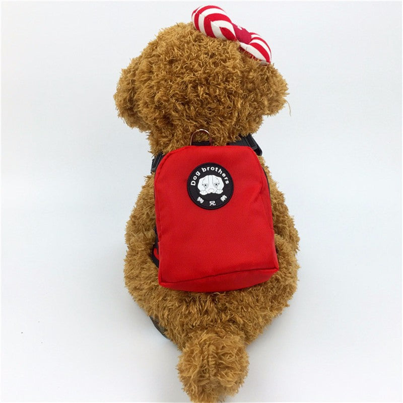 Comfortable Backpack For Your Precious Dogs And Cats