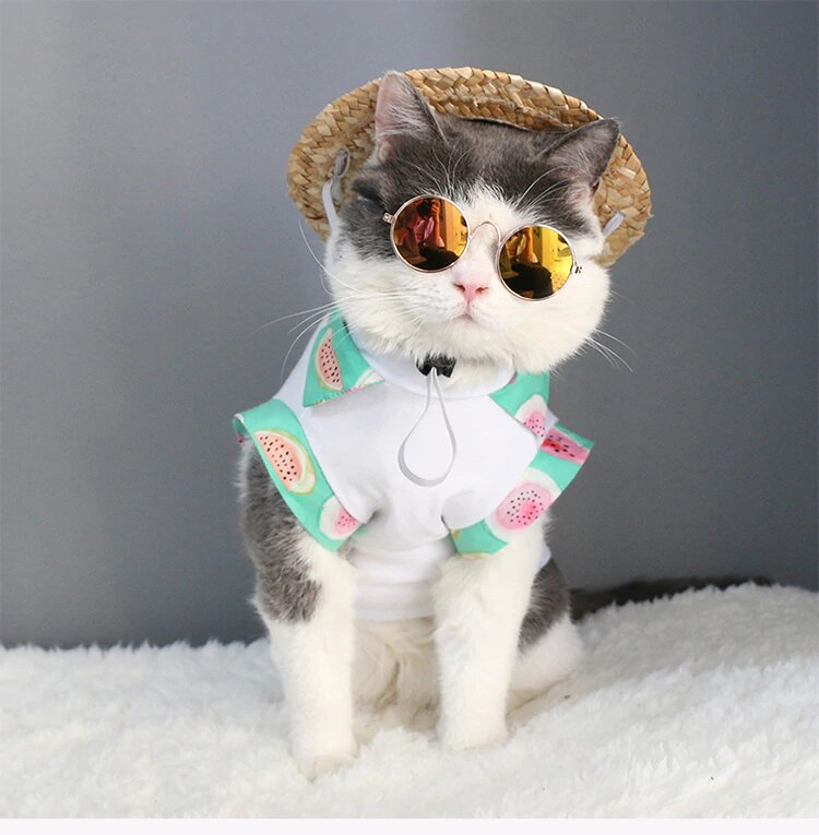 Round-Shaped Sunglasses With Metal Frame For Your Pets