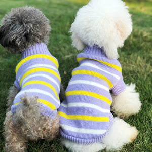 Winter Striped Knitted Crochet Purple Puppy Sweater - Woof Apparel