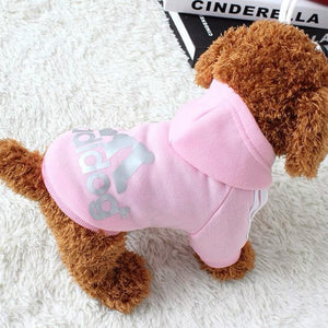 Sporty Dog Print Jacket Soft Winter Small Dog Hoodie