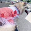 Gorgeous Red Plaid Tutu Princess Skirt Medium Dog Dress