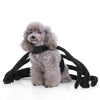 Fuzzy Spider Fleece Funny Halloween Costume for Dog - Woof Apparel