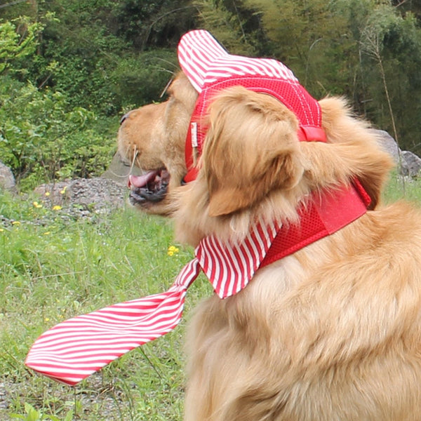 Colorful Stripes Adjustable Baseball Hat For Your Dogs