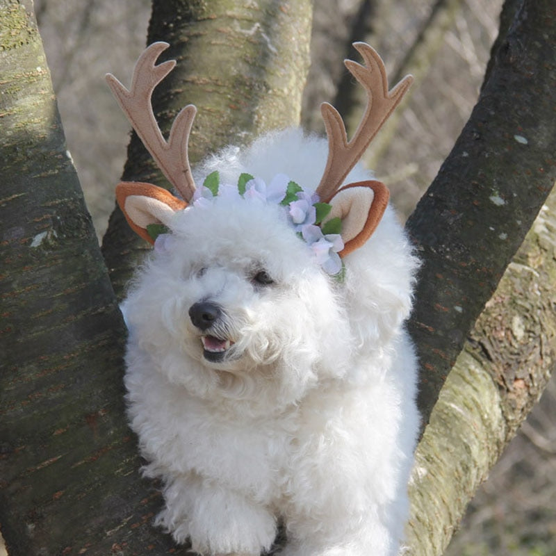 Lovely Deer Horn Stylish Headband For Your Dogs And Cats