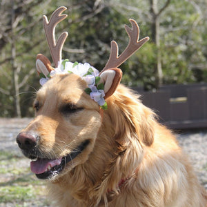 Lovely Deer Horn Stylish Headband For Your Dogs And Cats - Woof Apparel