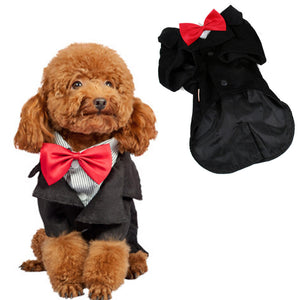 Gentleman Wedding Dress Costume For Dogs - Woof Apparel