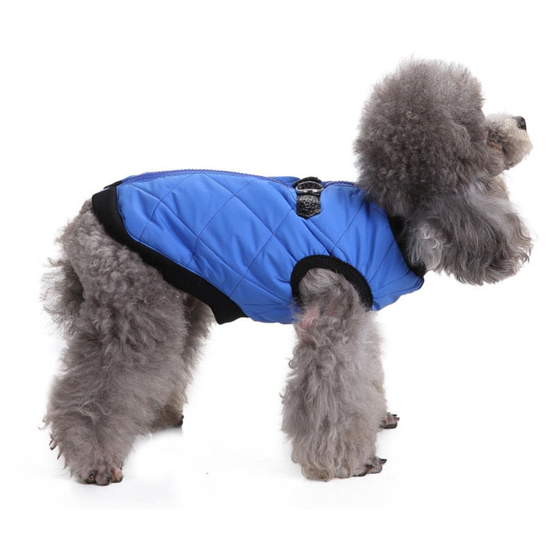 Comfy Warm Winter Vest With Leash Buckle For Small Dogs - Woof Apparel