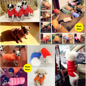 Winter Waterproof Rainy Season Soft Vest for Puppy Small Dogs - Woof Apparel