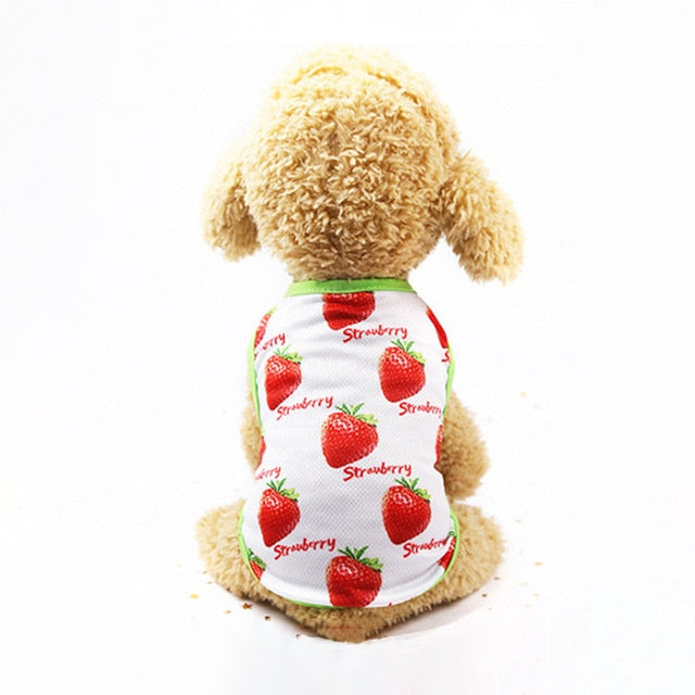 Strawberry Print Green Lining Spring Puppy Tank Top - Woof Apparel