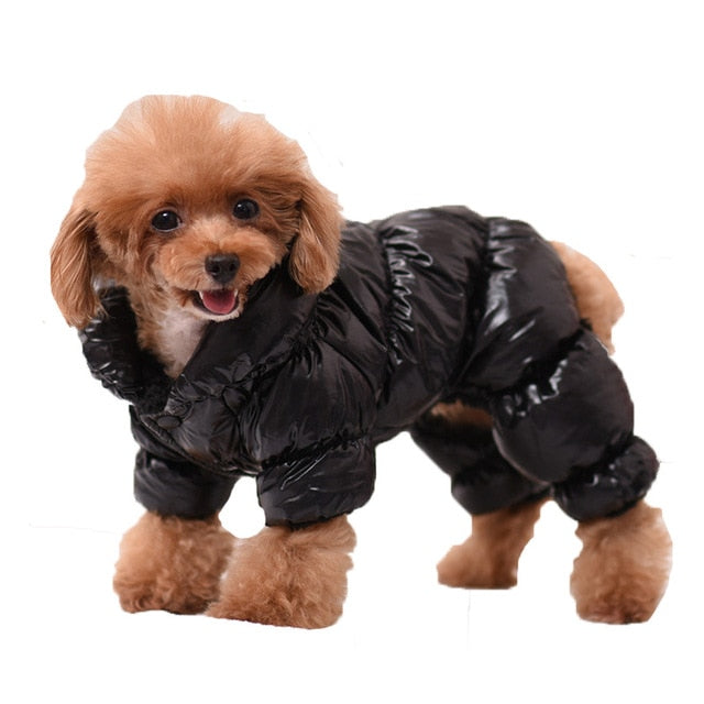 Soft Winter Dog Jacket with Thick Warm Lining for Small Dogs - Woof Apparel