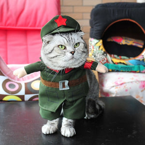 One Star Green Army Costume For Your Brave Cats And Dogs - Woof Apparel