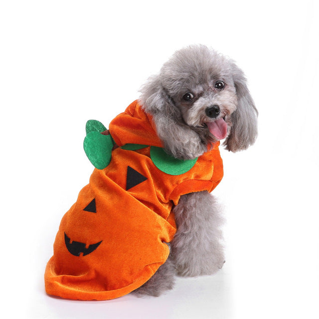 Cute Pumpkin Halloween Theme Party Orange Coat For Dog - Woof Apparel