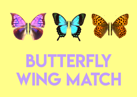 pattern matching butterflies