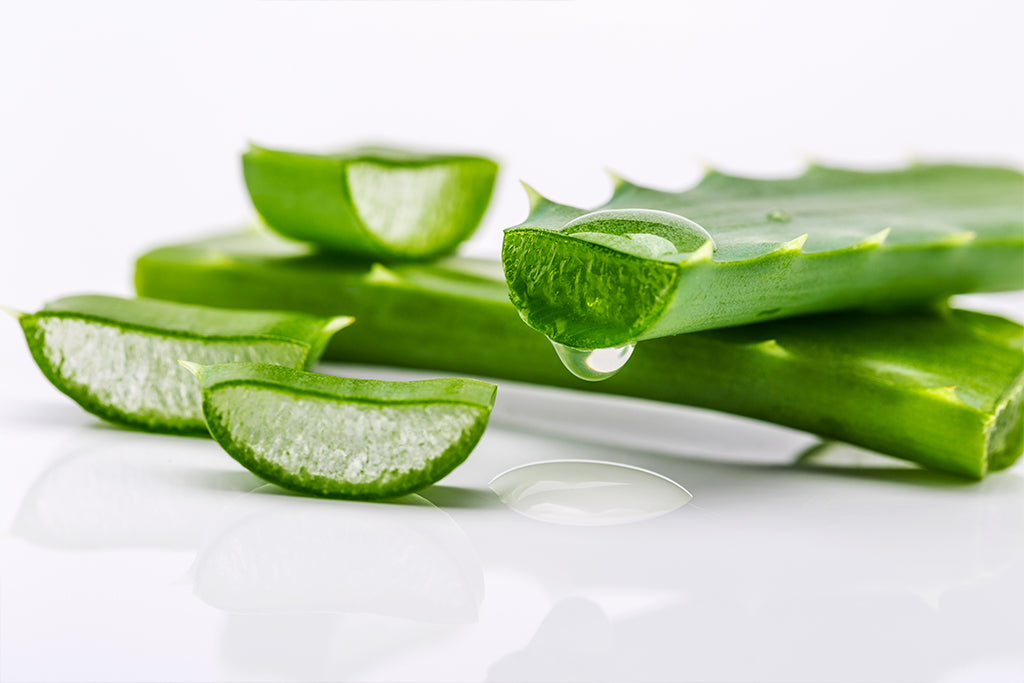 Aloe Vera Plant Gel The Easy-To-Use Marvel for Hair & Skincare