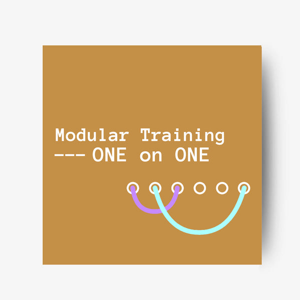 Modular Training - One on One