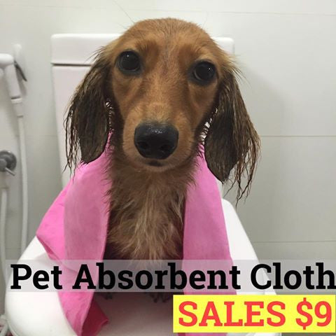 Pet Absorbent Cloth