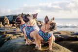 (15% OFF) REVERSIBLE DOG HARNESS: Scaled Back