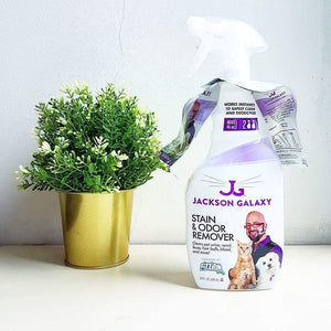 Jackson Galaxy Fizzion Stain & Odour Remover's