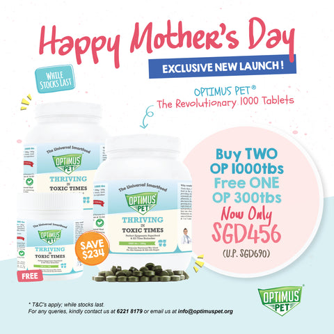 Optimus Pet Mother's Day Promo