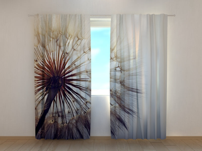 Photocurtain Amazing Dandelion