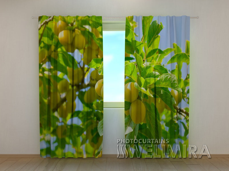 3D Curtain Apricots - Wellmira