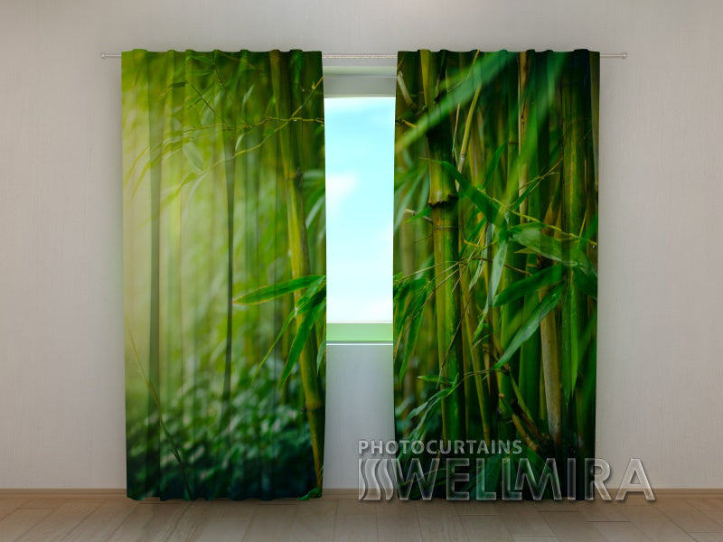 Photo Curtain Bamboo Forest 2 - Wellmira