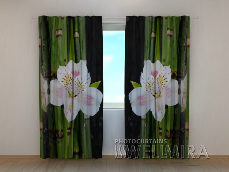 Photocurtain White Orchid and Green Bamboo - Wellmira