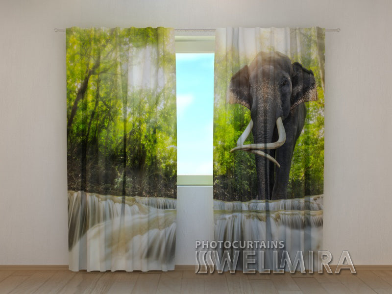 3D Curtain Big Elephant - Wellmira