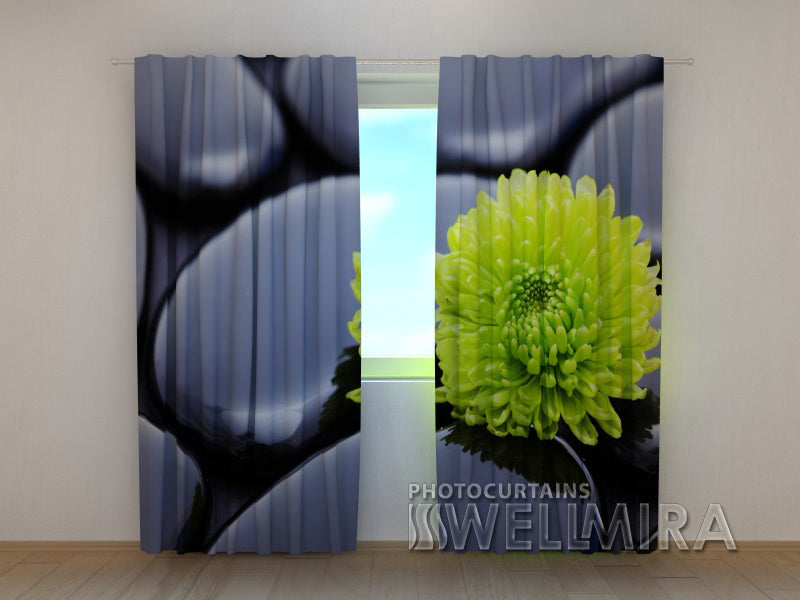 Photo Curtain Chrysanthemum Harmony - Wellmira