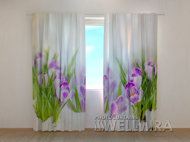 Photo Curtain Crocuses on Snow - Wellmira