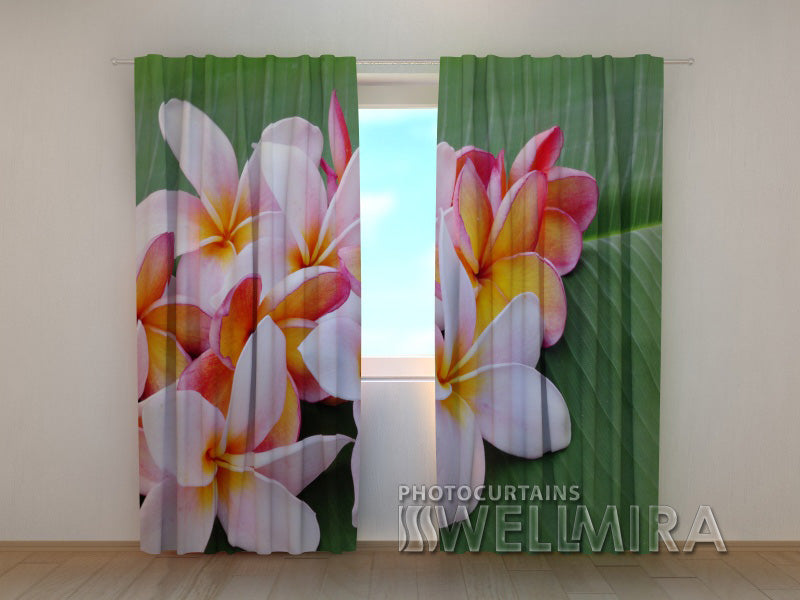 Photo Curtain Plumeria Flowers - Wellmira