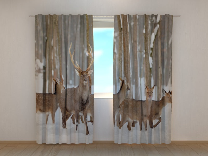 Photo Curtain Deer in Winter
