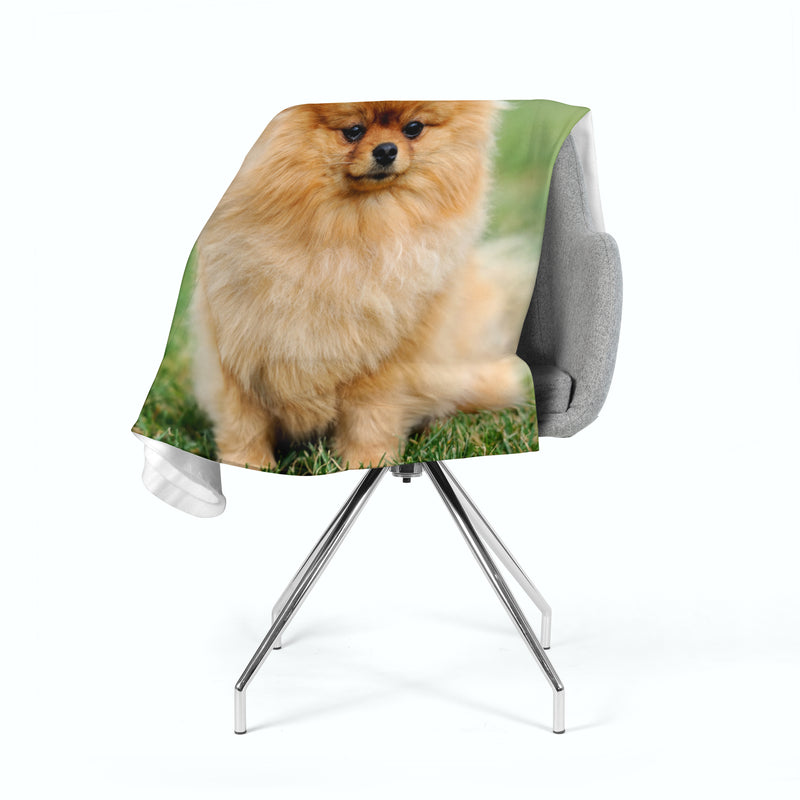Fleece Blanket Brown Pomeranian Dog