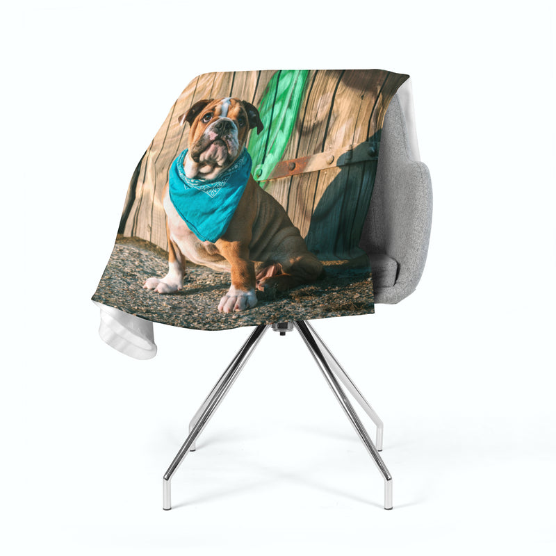 Fleece Blanket Stylish English Bulldog Puppy