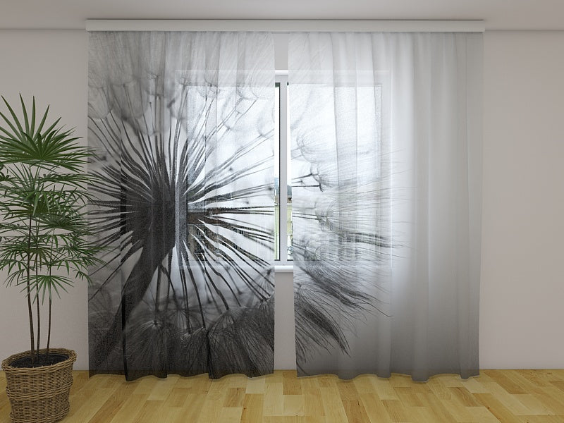 Photocurtain Amazing Dandelion Black and White - Wellmira