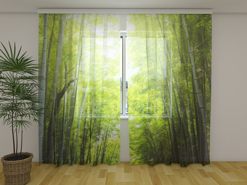 Photocurtain Bamboo Forest at Sunset - Wellmira