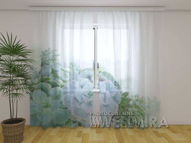 Photo Net Curtain Green Succulent Plants - Wellmira