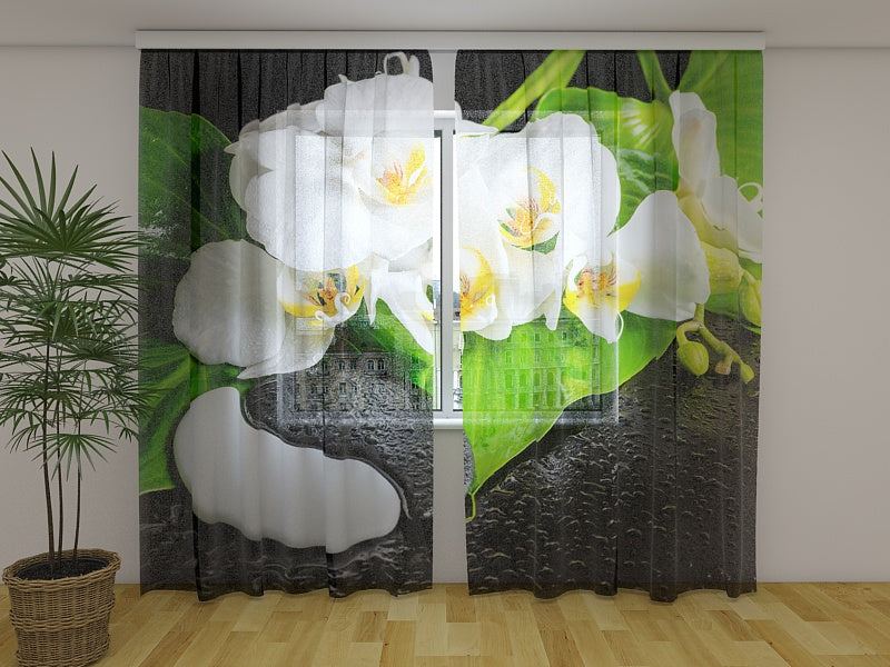 Photocurtain Orchids with Stones Yin Yang - Wellmira