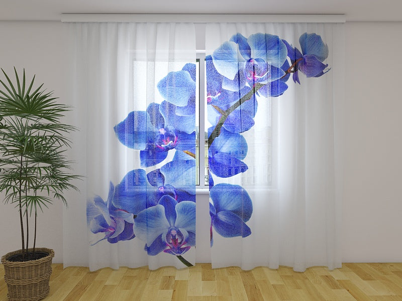 Photo Curtain Blue Orchid